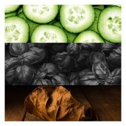 Pilule Manucure 6Pc Ongles